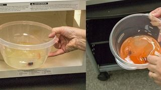 Có nên bỏ đồ nhựa vào lò vi sóng?