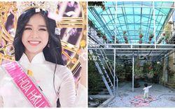Ngắm vườn tược siêu rộng nhà tân Hoa hậu Việt Nam 2020: Dân sành chỉ chăm soi giàn lan giá trị có thể đến tiền tỷ