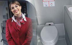 """Tiếp viên hàng không tiết lộ """"thời điểm vàng"""" để đi vệ sinh trên máy bay khiến ai nấy ngã ngửa, hóa ra chẳng phải """"cứ buồn là xả"""""""