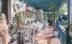 Thiên đường cây và hoa rộng 200m² của người phụ nữ dành cả thanh xuân để sưu tầm giống mới