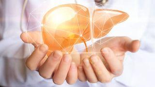 Chức năng của gan và những điều bạn có thể chưa biết