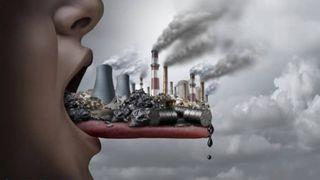 Độc tố từ môi trường và những điều bạn chưa biết