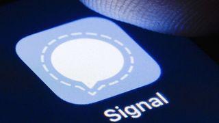 Ứng dụng của một cậu bé 12 tuổi vô tình mang lại hàng nghìn người dùng cho Signal như thế nào