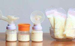13 lý do bạn không nên xin sữa mẹ của người khác cho con uống
