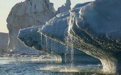 Băng tan đẩy các dòng hải lưu tới 'điểm giới hạn'