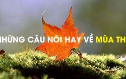 Những câu nói hay về mùa thu, status về mùa thu