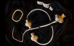 Thợ dò vàng tìm thấy kho báu Viking 1.000 năm tuổi
